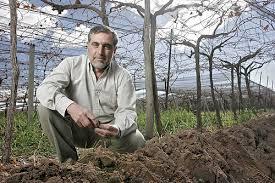 Jose-Alberto-Zuccardi