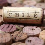 Chile-wine-cork