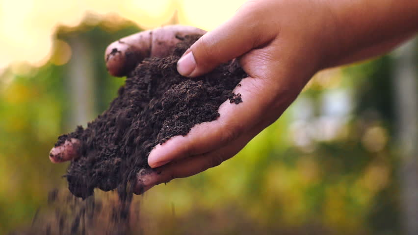 Its time to get dirty: Reconnecting with the soil is key to our health, well-being and happiness