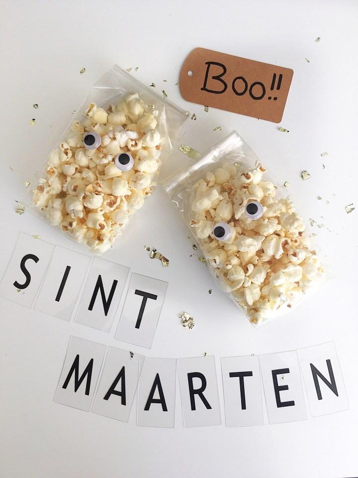 5x Sint-Maarten zakjes