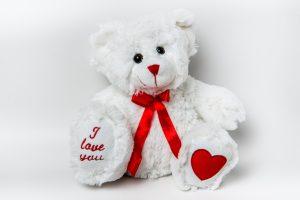 Romeo Bear soft toy