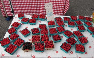sf_farmers_market138