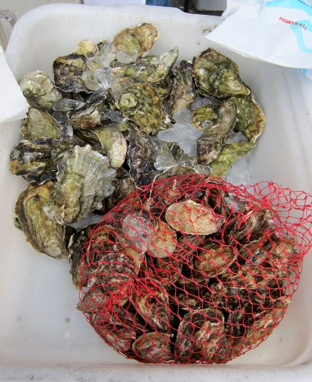 sf_farmers_market_seafood1
