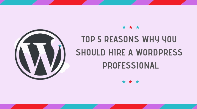 Top 5 Reasons To Hire a WordPress Professional