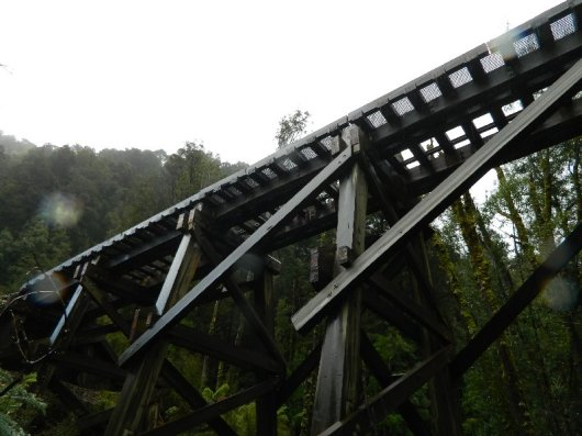 Wooden Trestle Bridge-West Coast Wilderness Railway, Tasmania