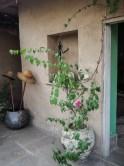 Fashion-Me-Now-Rajasthan-Jaipur-Secret-Escape-8-687x916