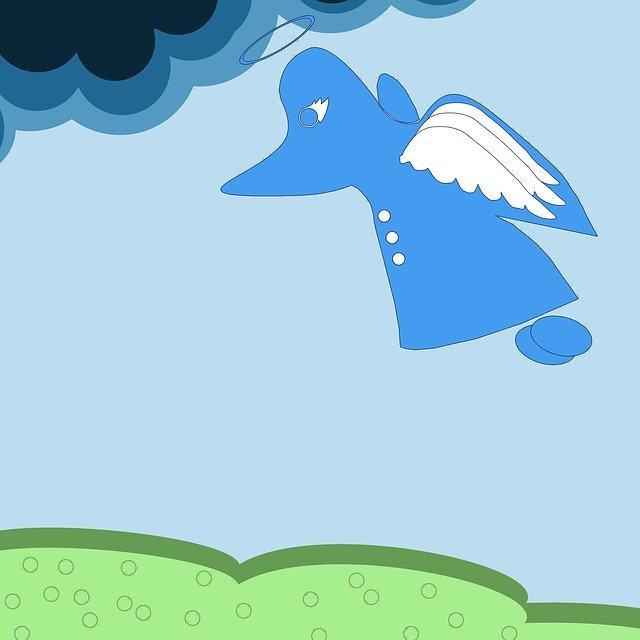 Anna Kaca - Po co Anioły są na świecie; Czyta #TataMariusz