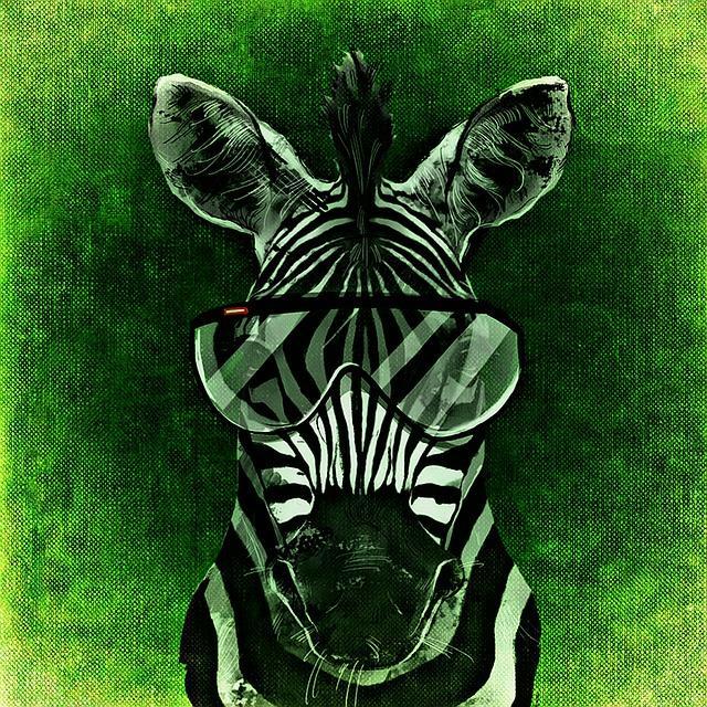 Hanna Niewiadomska - Zebra; Czyta #TataMariusz