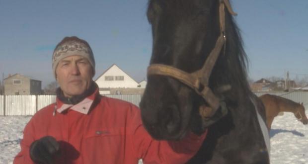 Ульфат Усманов: полвека любви к лошадям