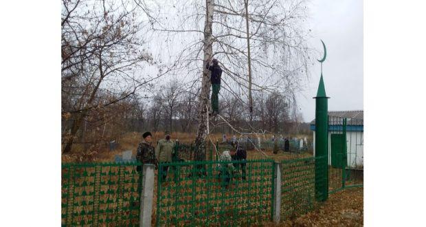 Ульяновск өлкәсендә зиратларны тәртипкә китерәләр