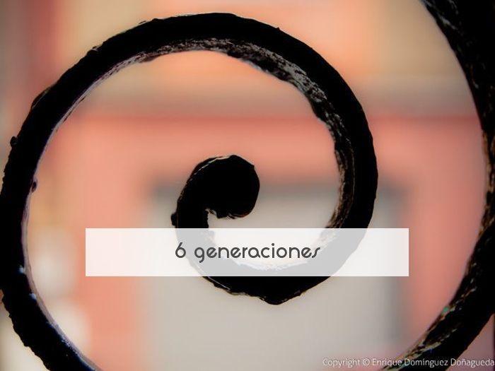 6 generaciones