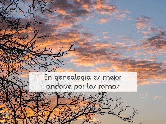 En genealogía es mejor andarse por las ramas
