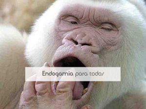 Endogamia para todos