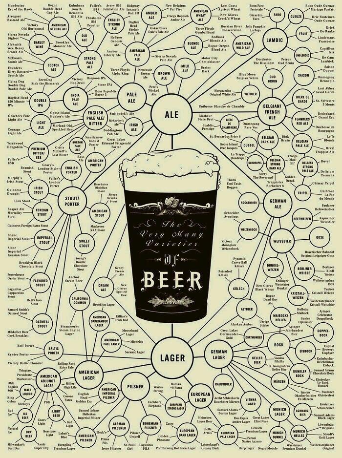 Árbol genealógico de la cerveza