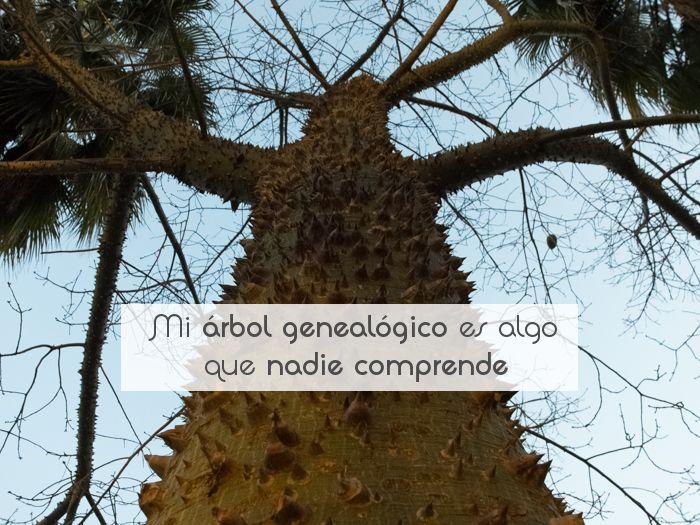 Mi árbol genealógico es algo que nadie comprende
