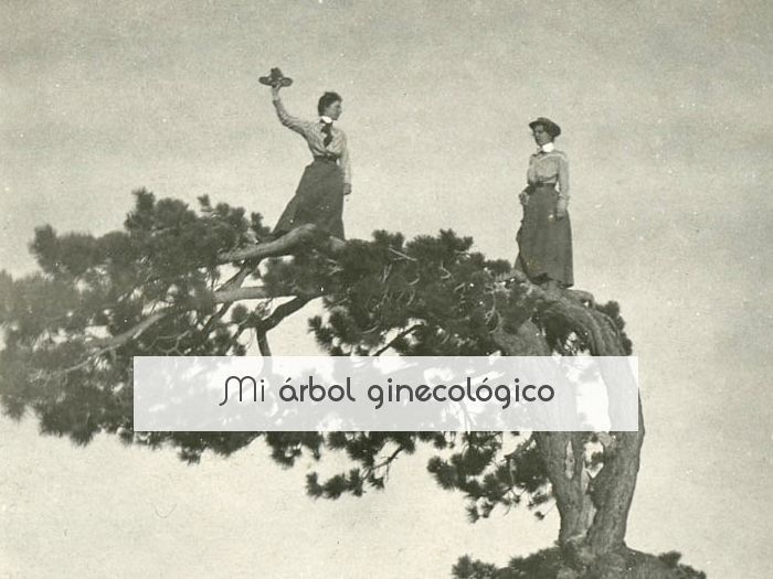 Mi árbol ginecológico
