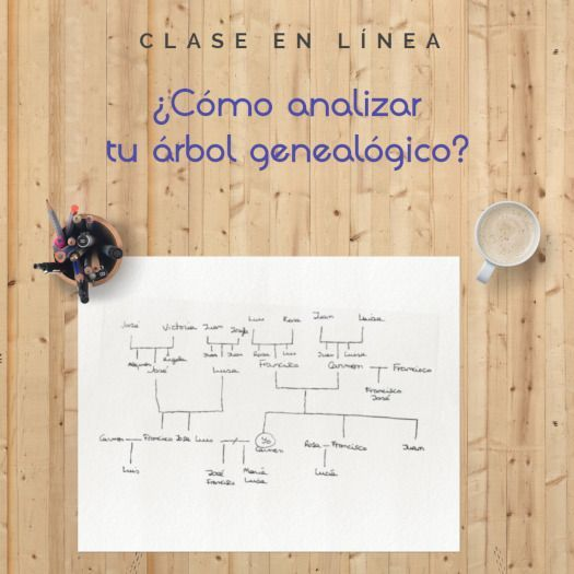 Cómo analizar tu árbol genealógico