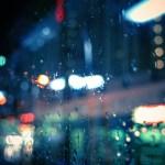 夜×雨スナップ