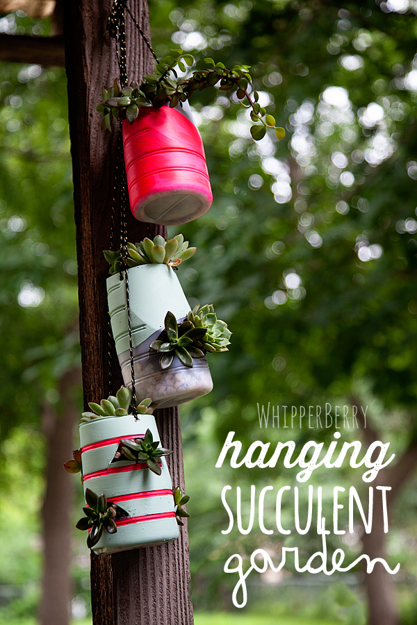 hanging-succulent-garden-with-International-Delights-whatsyourid[1]
