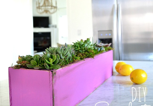 DIY Wood Succulent Planter #LowesCreator #SpringIsCalling