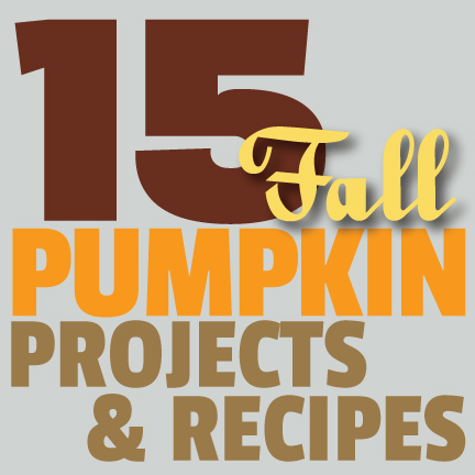 Great Ideas — 15 Autumn Pumpkin Projects & Recipes!