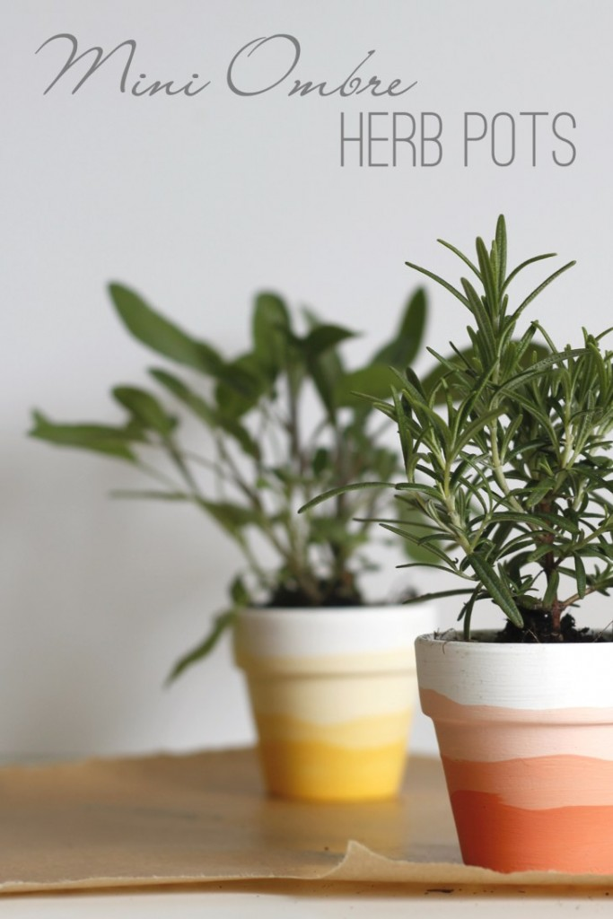 Mini-Ombre-Herb-Pots-pin