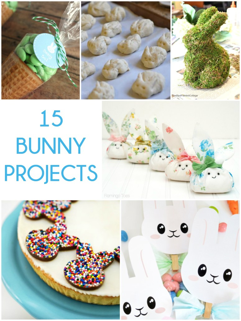 Great Ideas 15 Bunny Projects