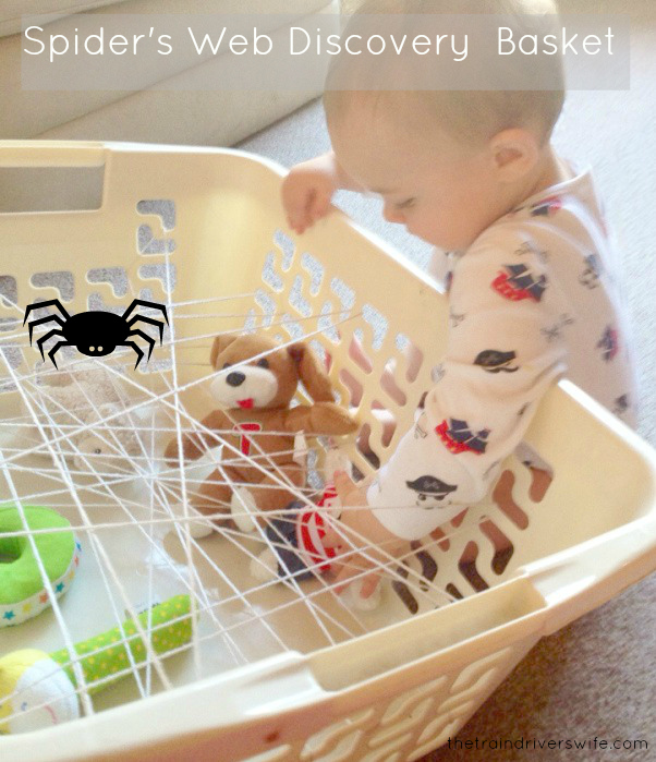 spiders-web-discovery-basket
