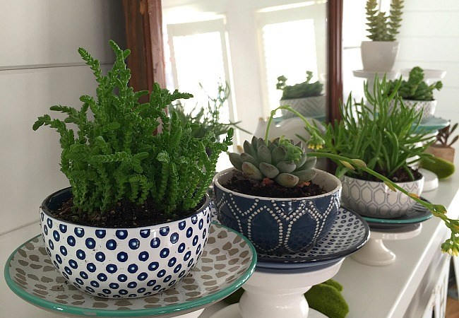 Spring Potted Succulent Mantel!