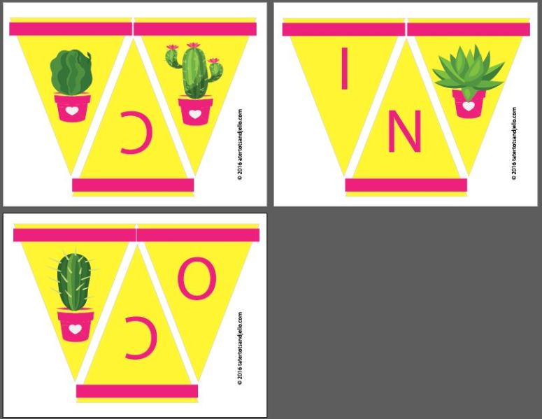 cinco de mayo party pennants