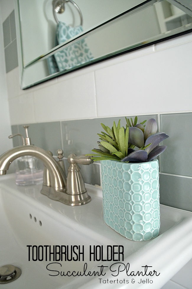 toothbrush holder succulent holder