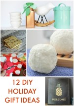 Great Ideas — 12 DIY Holiday Gift Ideas!
