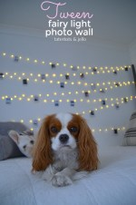 Tween/Teen Fairy Light Photo Wall