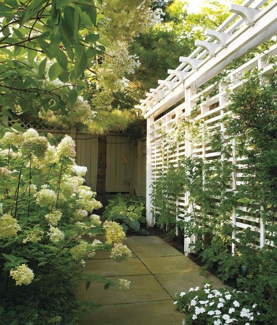 slat lattice fence - 15 Outdoor Privacy Screen And Pergola Ideas