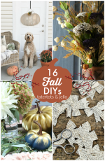 Great Ideas — 16 GORGEOUS Fall DIYs!
