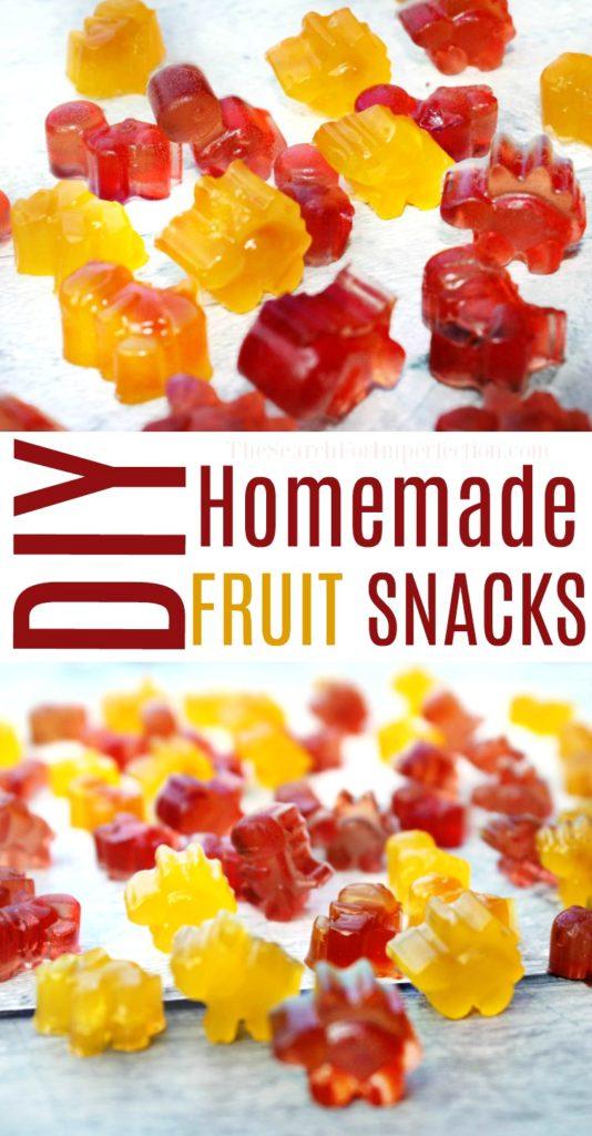 DIY Healthy Fruit Snack Recipe.