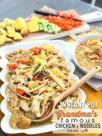Grandma's Famous Chicken and Noodles in the Instant Pot. Shredded chicken with hearty vegetables and thick egg noodles in a thick, creamy sauce. This is comfort food at it's finest.