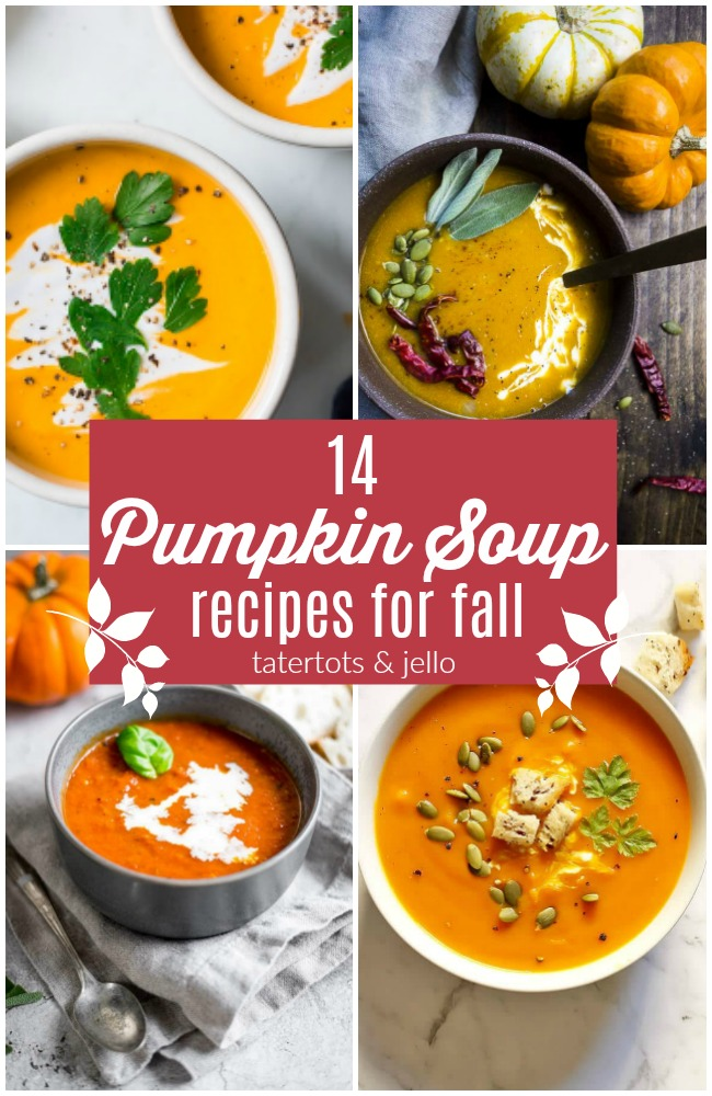 14 DELICIOUS Pumpkin Soup Recipes for Fall!