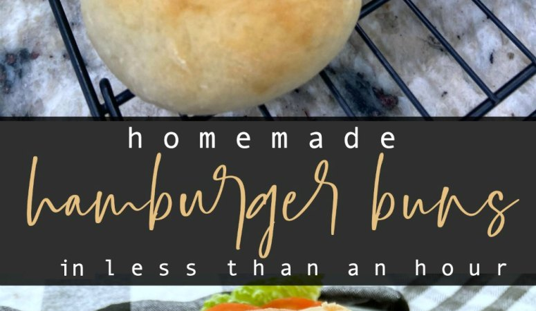 Fast and Easy Homemade Hamburger Buns in Less Than an Hour