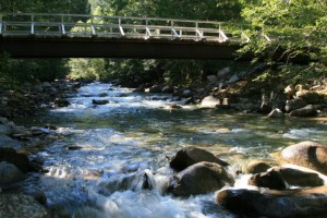 Very well maintained bridge spans the creek not far from the trailhead