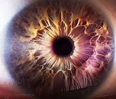 Luteína e Zeaxantina: Substâncias Essenciais para a Saúde Ocular