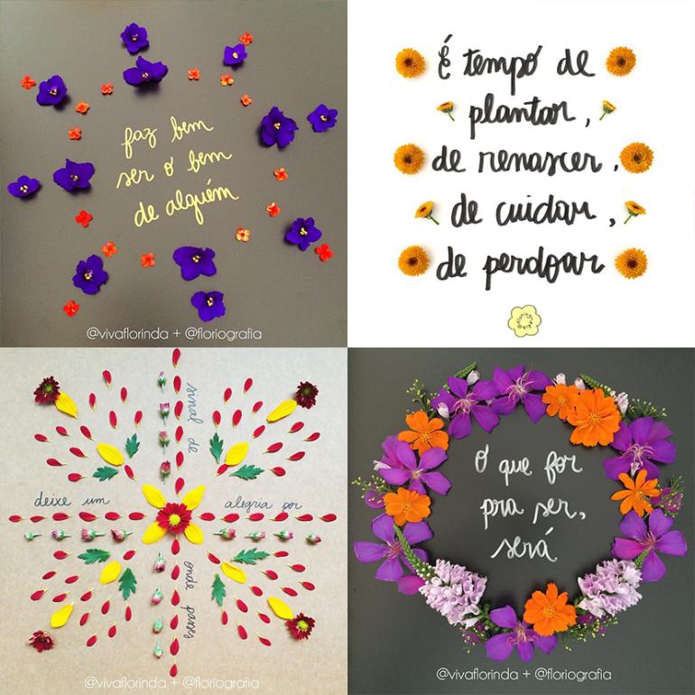 Floriografia, frases floriografia, frases bonitas, frases ilustradas, frases com flores