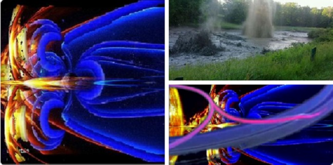 fish-CERN 7