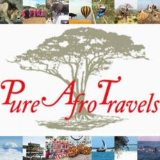 Pure Afro Travels
