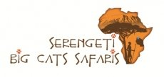 Serengeti Big Cats Safaris Ltd