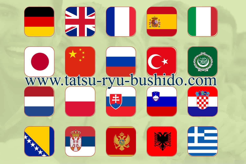 Tatsu-Ryu-Bushido Homepage in 20 Sprachen