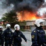 ストックホルム郊外の若者の暴動について -スウェーデンのユースワークの日常と歴史に照らして
