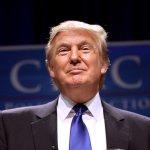「ポスト真実の政治」が本丸になったアメリカが今から恐怖
