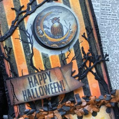 A Happy Halloween Hoot!