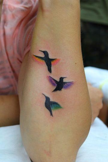 Colourful Hummingbirds